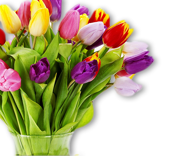Send Flowers In Melbourne | Flower Delivery Melbourne