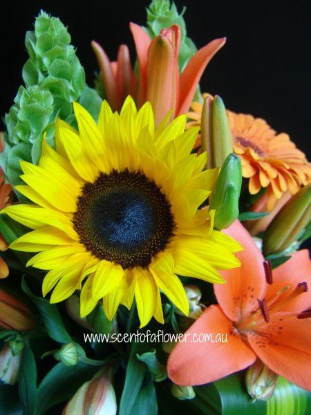 florist_choice_1