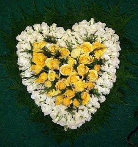 heart 001