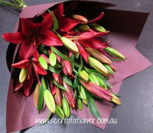 red_lilies